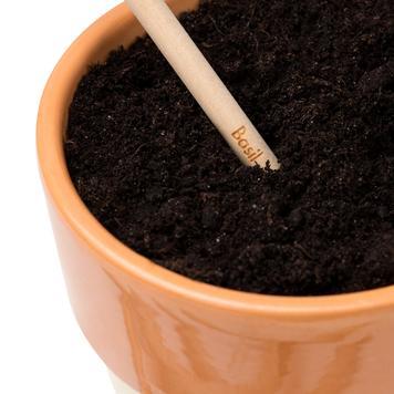 """Μολύβι """"Sprout"""", το Φυτευόμενο Μολύβι"""